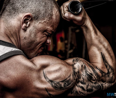 Dedicated routine for massive triceps